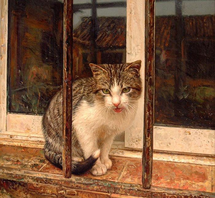 gato tras reja (700x645, 208Kb)