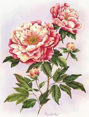 Всем, любящим цветы, скрап, декупаж и просто красивые картинки.