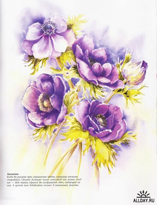 нарисованные цветы картинки акварелью