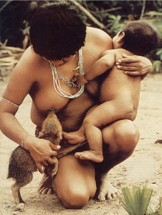 Голые племена фото  дикие женщины Африки индейцев амазонки