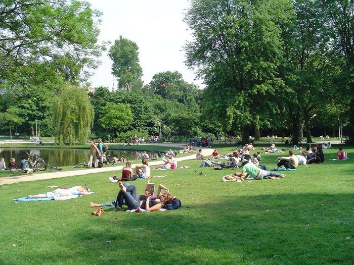Секс парк амстердама