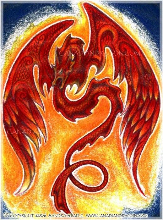 Огненный дракон картинки нарисованные