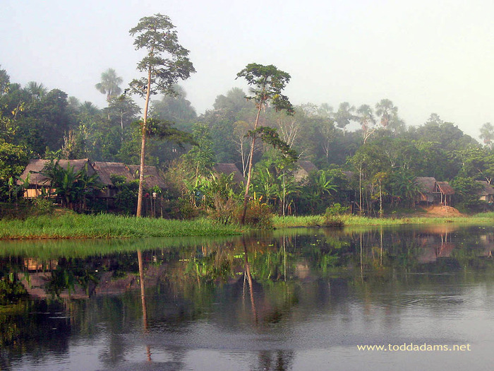river_amazon (700x525, 160Kb)