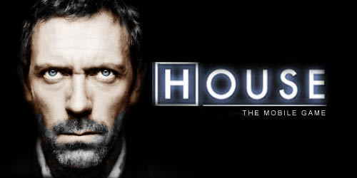 3069020_house_md (500x250, 13Kb)