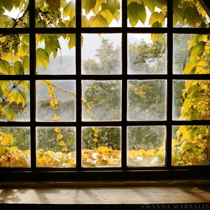Картинки на телефон красивые природа осень кормилец