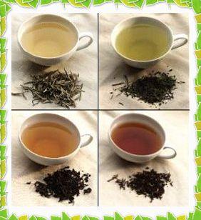 Использование чая в хозяйстве/2719143_09701 (282x308, 22Kb)