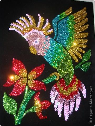 схема вышивки бисером и паетками для костюма восточного танца Вышивка.