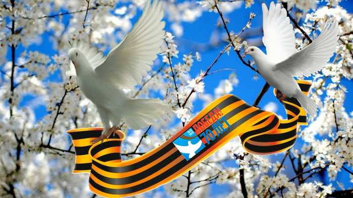 Картинки с голубем мира на день победы, летний