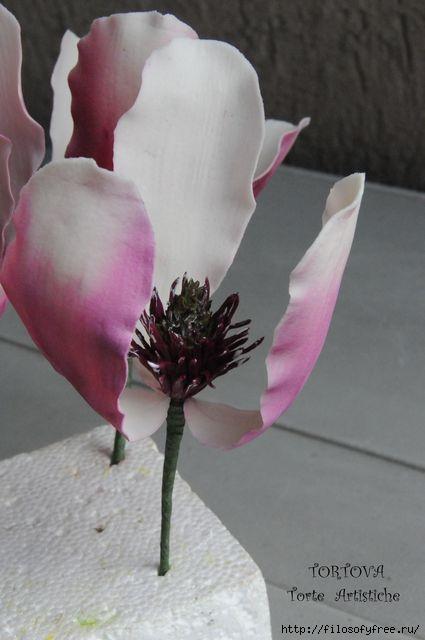 Gumpaste Magnolia Tutorial11 (425x640, 100Kb)