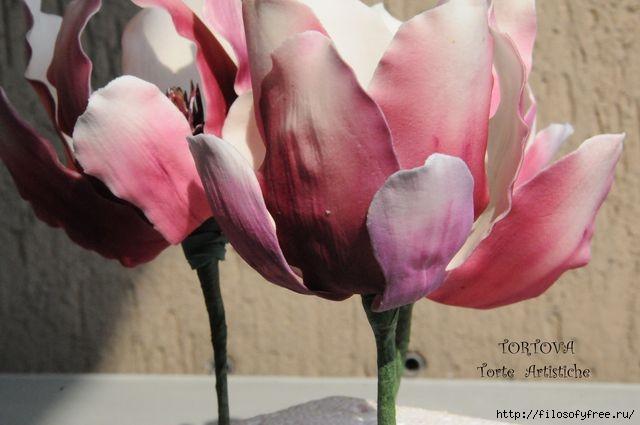 Gumpaste Magnolia Tutorial13 (640x425, 113Kb)