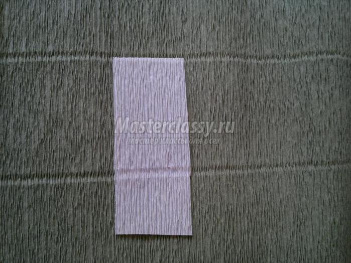 Как сделать из гофрированной бумаги гладиолусы фото 24