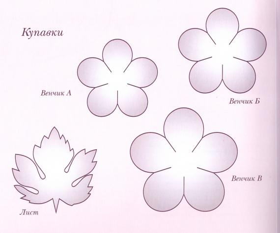 1431606174_katalina_Svetlanabuton_erka5 (570x475, 60Kb)