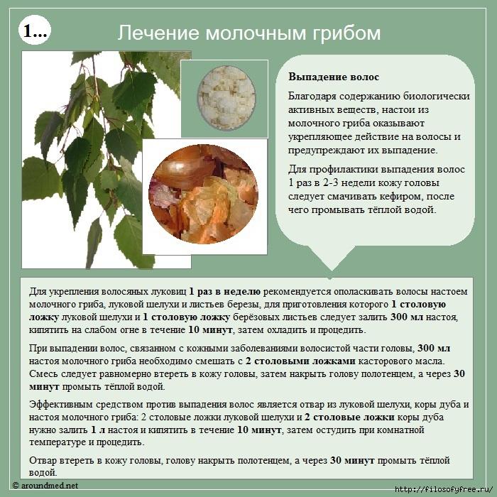 1431851004_lechenie_molochnuym_gribom (700x700, 349Kb)