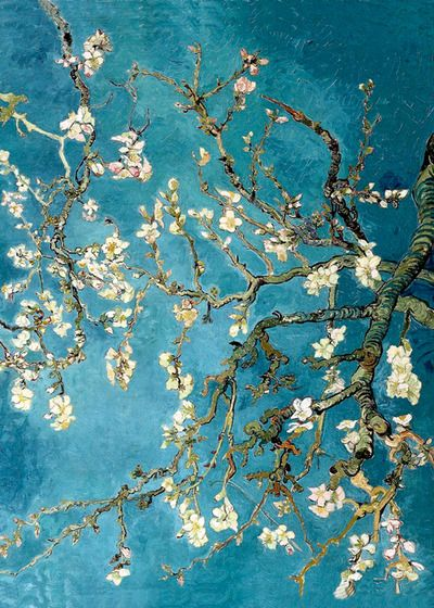 Vincent Van Gogh  Blossoming Almond Tree (400x560, 68Kb)