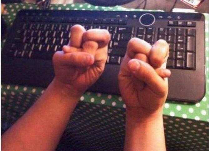 домашний паук картинки руки кривые чтобы они