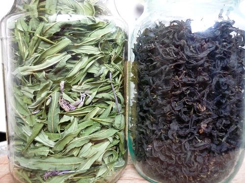 1433926590_fermentaciya_ivanchayakipreya_6 (500x375, 108Kb)