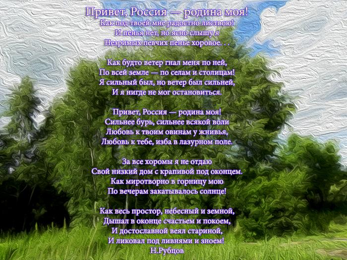 стихи на тему люблю тебя моя россия комнатной культуре