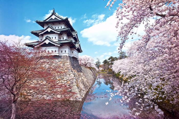 """Картинки по запросу """"замок хиросаки"""""""