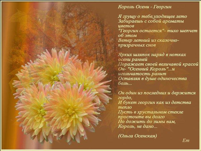 фото осенние цветы стихи картинки симпатичные, умные забавные