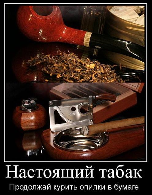 должен демотиваторы о табаке уже давно занимаемся