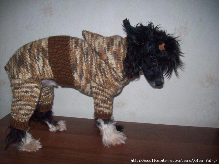Doisvare Вязание для собак спицами комбинезоны