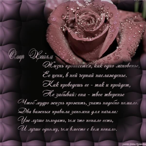 Стихи цитаты поздравления с днем