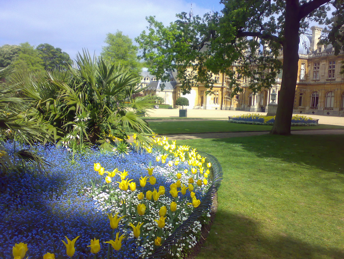 All sizes  Waddesdon Manor Flower bed  Flickr - Photo Sharing! (700x527, 980Kb)