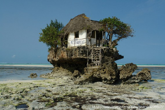 ресторан/4295517_1323866124_1323764013_zanzibarrockrestaurantmichanwi (570x380, 158Kb)