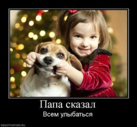 http://img1.liveinternet.ru/images/attach/c/4/81/153/81153937_1_Novuyy_god_vsem_uluybatsya.jpg