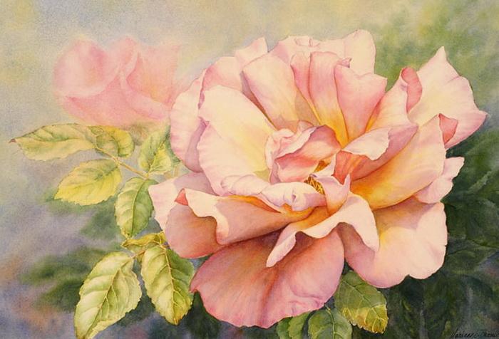 Summers-Bloom (700x476, 116Kb)