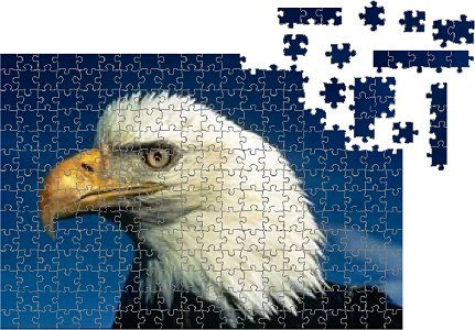 eaglepuzzlep (431x300, 50Kb)