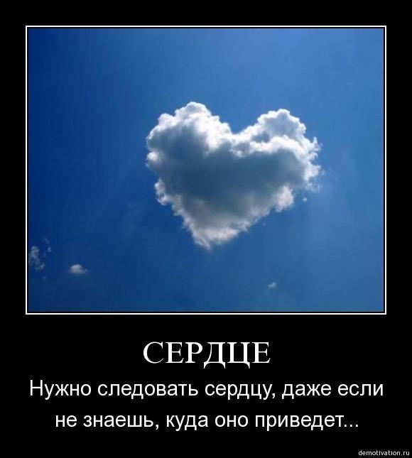 картинки следуй своему сердцу