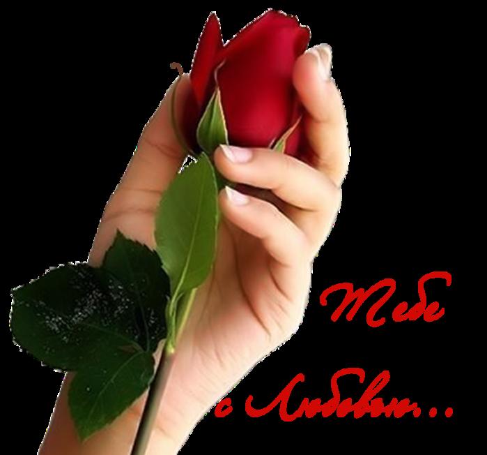 Картинки спасибо за цветы любимый образ