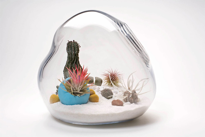 mini-terrarium-0 (700x466, 55Kb)