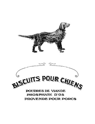 4829436_french_dog_bisquit_graphicsfairy_sm (309x400, 15Kb)