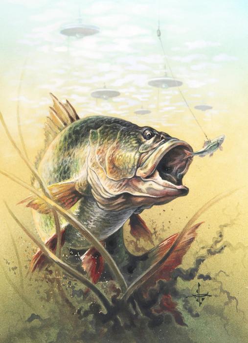 Сайт о рыбах для рыболова