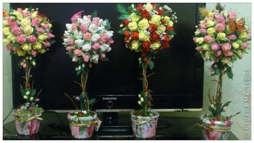Топиарий из живых цветов своими руками фото 370