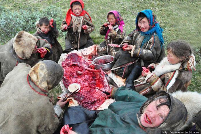 Indo-European Pazyryk cultures ancestor of red hair Kyrgyz