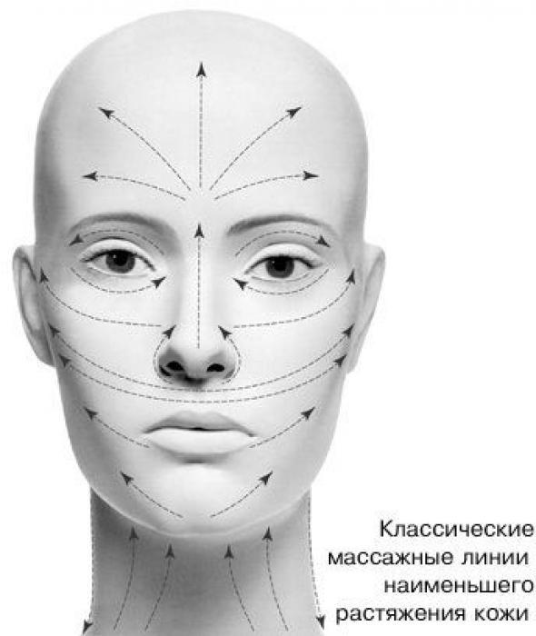 орбитальная кость лица фото