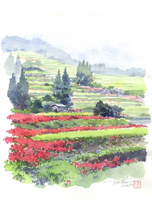 Гора рисовые террасы воротник (495x650, 233Kb)