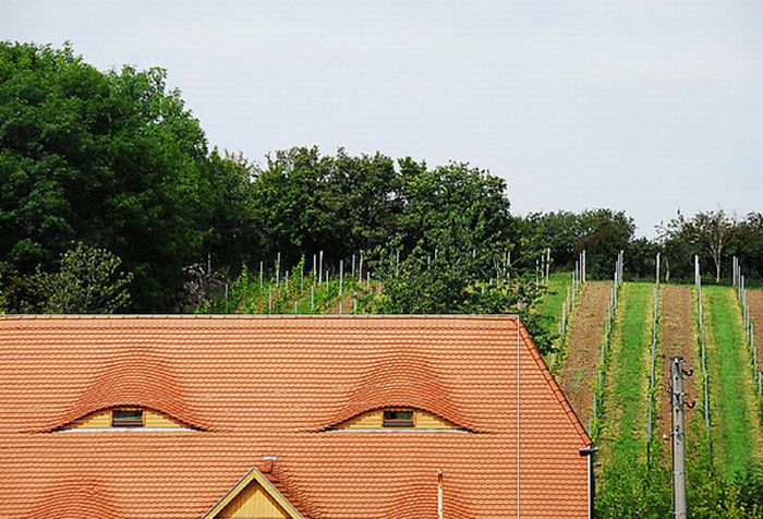 1302609653_buildings_that_look_like_faces_72 (700x476, 92Kb)