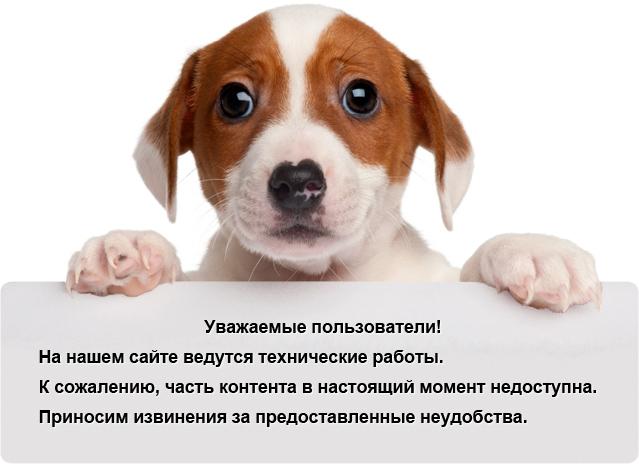 Даша Радосавлевич Голая