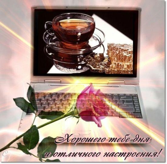 http://img1.liveinternet.ru/images/attach/c/5/86/803/86803647_6b05c43acfb8cb1bcfc6215d17623d7e.jpg