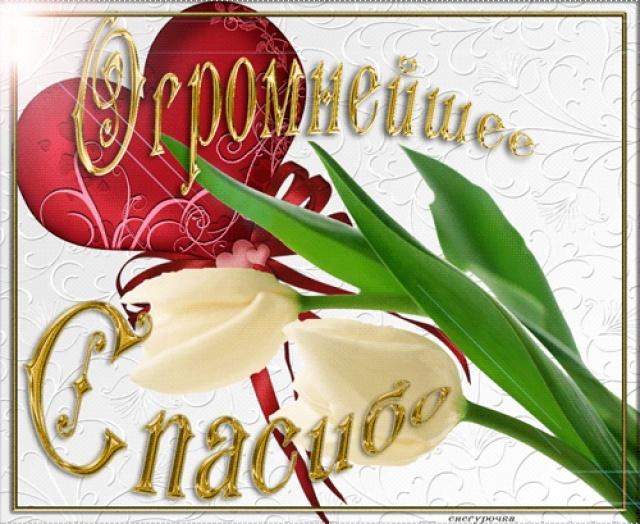 http://img1.liveinternet.ru/images/attach/c/5/87/453/87453209_image.jpg