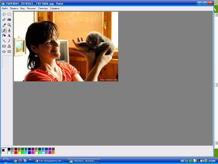 Как объединить две фотографии в Paint