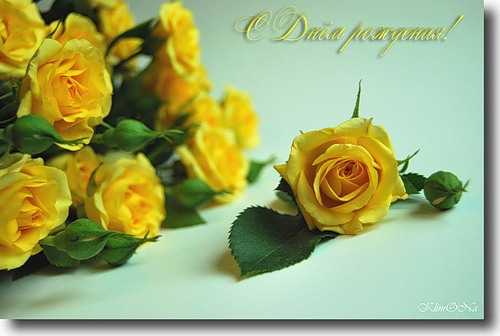 Открытка, картинка желтые розы с днем рождения