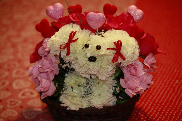смешные букеты цветов фото фотографической