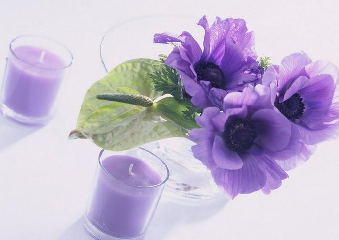 Ванильные фотографии цветов от Sozaijiten 5 (700x496, 59Kb)