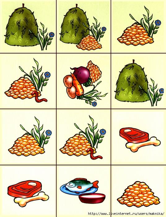 рыба животные кто чем питается в картинках хозяин