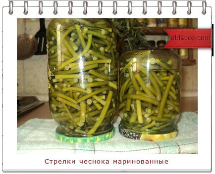 3518263_chesnok (434x352, 240Kb)